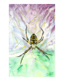 Descending Spider Giclee Print by Kay Cochran