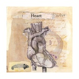 Anatomy Of A Heart I Giclee Print by Jan Weiss