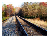 Railroad Tracks In The Country Photographic Print by Deborah Hullender