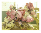 An Illusion Of Roses Photographic Print by Susan Lipschutz