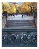 Stairs In Central Park Photographic Print by Wayne Houser