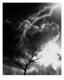 Electrifying Moment Photographic Print by Rich Jones