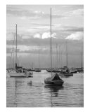 Harbor Sailboats And Fishing Boats Photographic Print by Mary-anne Ganley