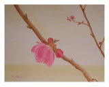 Lunar New Year Peach Flowers Giclee Print by Thi Nguyen