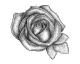 Rose Giclee Print by James Christopher III