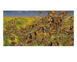 Bees Photographic Print by Tom Wrenn