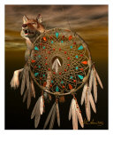 Wolf In The Dream Catcher Photographic Print by Alan Armstrong