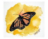 Orange Monarch Butterfly Abstract Giclee Print by Derek Mccrea