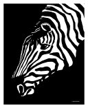 Zebra Art Photographic Print by Elizabeth Cereby