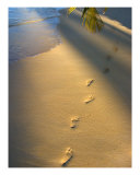 Footprints-1 Photographic Print by Tomas del Amo