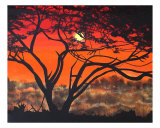 Another Day In The Life Of A Tree Giclee Print by Rebecca Shadrick