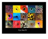 Eye Sea IV Fotodruck von Dray Van Beeck