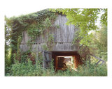 Abandoned Tobacco Barn In Kentucky Photographic Print by Janet Ellen Lusk