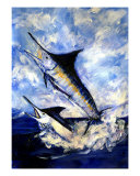 2 Marlin A Blue And A Striper Giclee Print by Randy Sprout