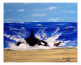 Killer Orca Whale Chases Seal Sea Lion Giclee Print by Teo Alfonso