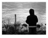 Lonely Boy Watching Swan Photographic Print by Colm Kelly