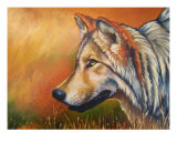 Gray Wolf Study Giclee Print by Suzanne Barrett Justis