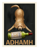 Adhamh - Golden Retriever Giclee Print by Chad Otis