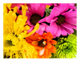 Mixed Bouquet Photographic Print by Florene Welebny