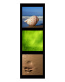 Beach Triptych Photographic Print by Alex Bramwell