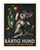 Bartig Hund - Schnauzer Giclée-tryk af Chad Otis