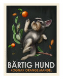 Bartig Hund - Schnauzer Giclee Print by Chad Otis