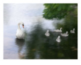 Family Pride Photographic Print by Susan Lipschutz