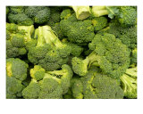 Good For U Broccoli Photographic Print by Florene Welebny