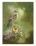 Cactus Wren Giclee Print by Reenie Kennedy