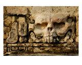 Maya Skull Carving Photographic Print by Alex Bramwell