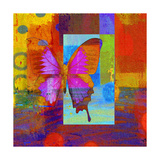 Butterfly IV Giclee Print by Ricki Mountain