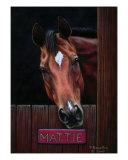 Horse Portrait Giclee Print by Yvonne Hazelton