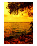 Across The Shore Photographic Print by Florene Welebny