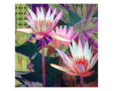 Waterlily Mixed I Giclée-Druck von Francisco Valente