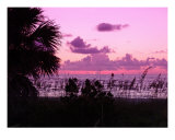 Paradise Day Ends Photographic Print by Florene Welebny