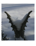A Gargoyle Oversees A Snowy Landscape Photographic Print by Clarence Carvell