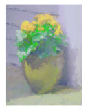 Painted Yellow Begonias Photographic Print by Susan Lipschutz