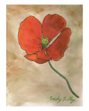 Red Flanders Poppy Giclee Print by Emily Lilly