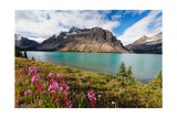 Bow Lake Scenic, Alberta, Canada Photographic Print by George Oze