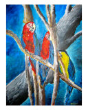 Parrot Tropical Art Oil Painting Print Giclee Print by Derek Mccrea