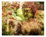 Garden Zen Buddha Fotografie-Druck von Francisco Valente