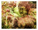 Garden Zen Buddha Photographic Print by Francisco Valente