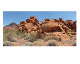 Valley Of Fire Photographic Print by Mary Lane