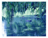 Willows And A Duck Pond Photographic Print by Lorrie Morrison
