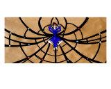 Spider Woman Giclee Print by Derek Mckindles