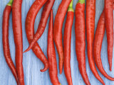 Red Chilli Peppers Chillies Freshly Harvested on Pale Blue Background Posters by Gary Smith