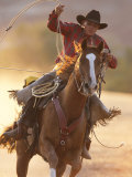 Cowboy Galloping While Swinging a Rope Lassoo at Sunset, Flitner Ranch, Shell, Wyoming, USA Photographic Print by Carol Walker