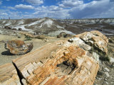 Petrified Logs Exposed by Erosion, Painted Desert and Petrified Forest, Arizona, Usa May 2007 Photographic Print by Philippe Clement