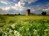 Knowlton Church, Dorset, UK Posters by Ross Hoddinott