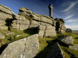 Widgery's Cross on Brat Tor, Dartmoor Np, Devon, UK Posters by Ross Hoddinott